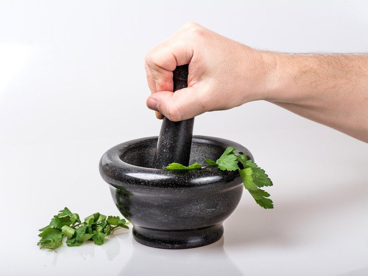 Besonders typisch für Abrotanum oder Eberraute die Abmagerung trotz Heisshunger.