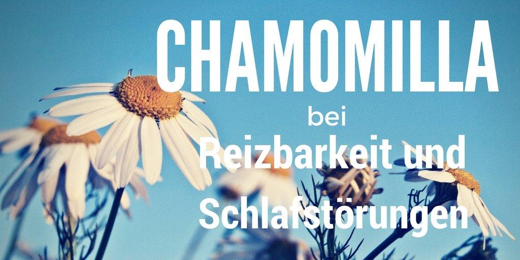 Chamomilla die Kamille