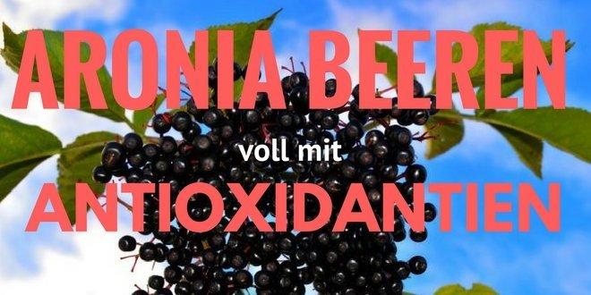 Aronia Beere oder Apfelbeere (Aronia melanocarpa)