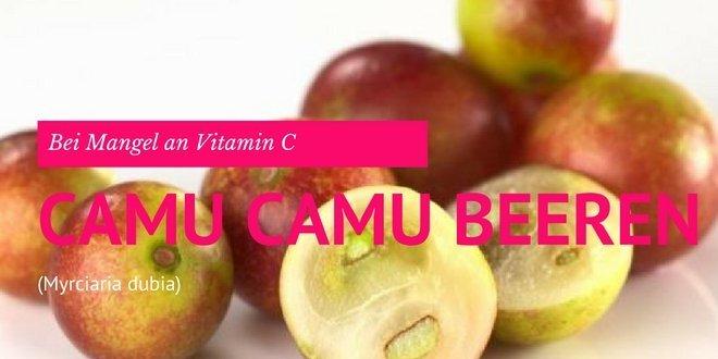 Camu Camu Beeren enthält Vitalstoffe wie Rutin